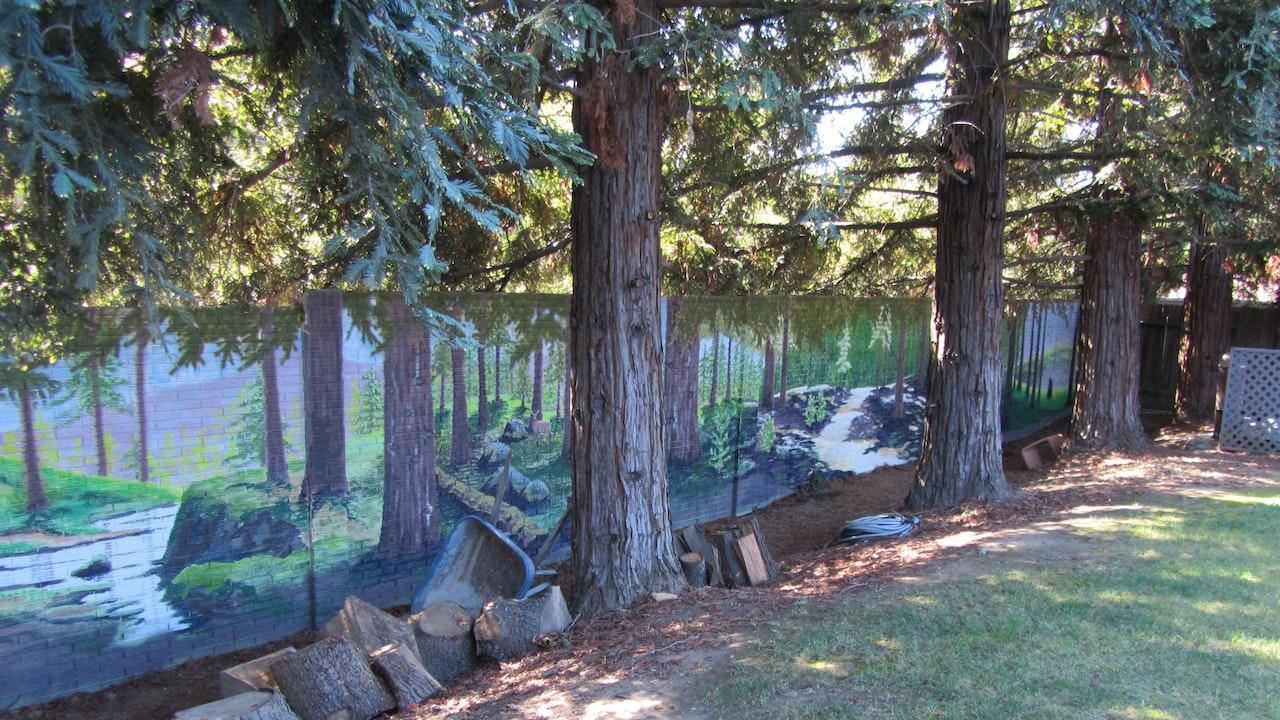 Maureen's Forest