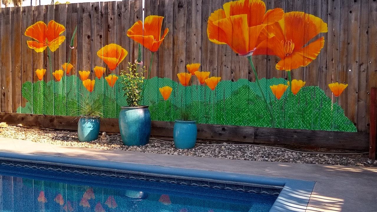 2021 Poolside Poppies