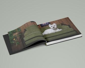 Groomed hardcover book ≥