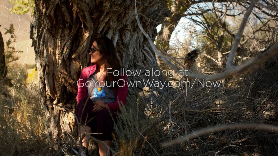 THOR Millennial Social Campaign THOR Trip 2 Story 1 - :30