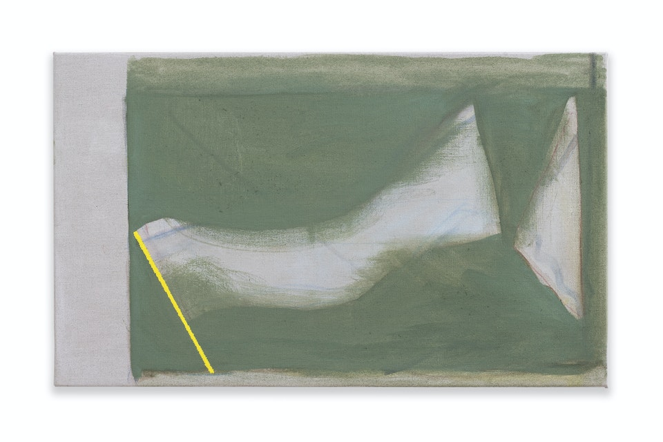 works II - Foray, 2021, 33x55cm, acrylic, oil paint and colour pencil on linen.