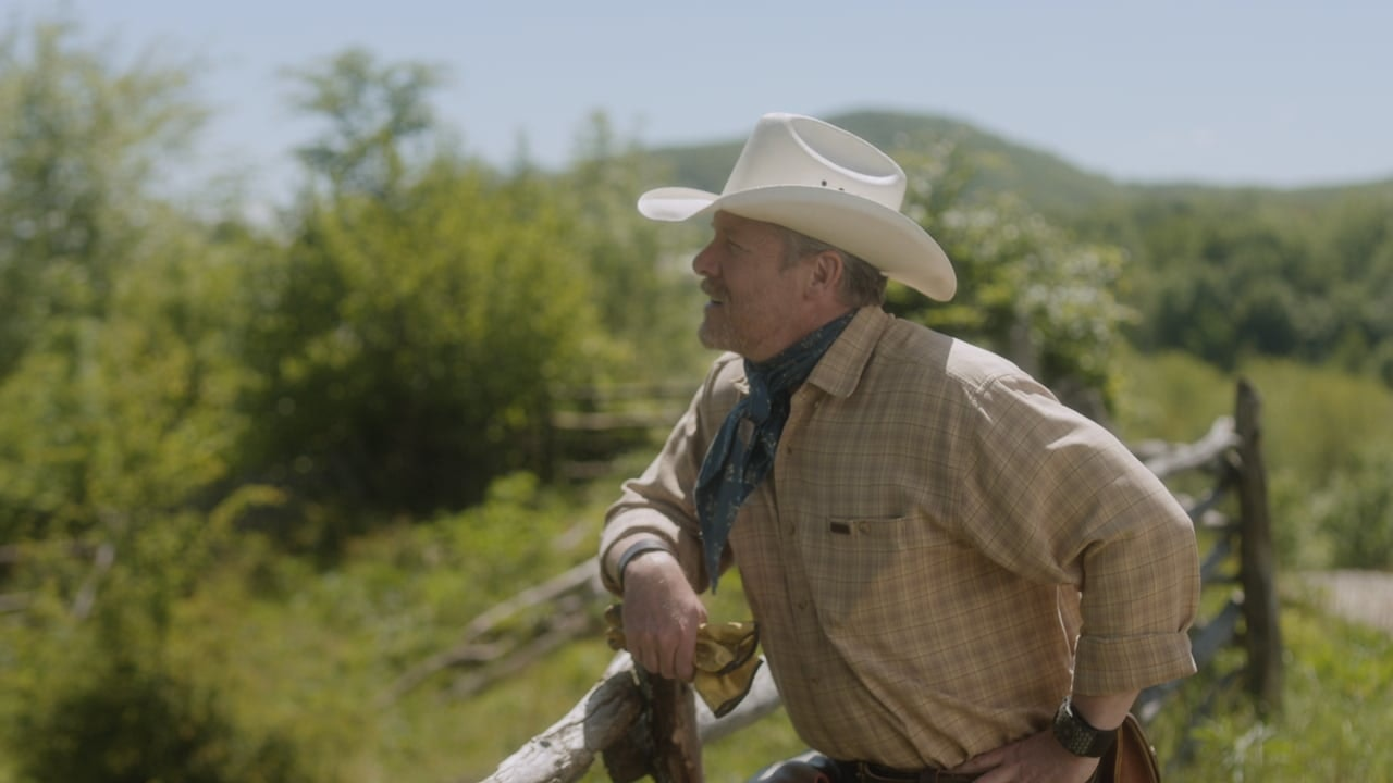 COMMERCIAL: EXPEDIA - COWBOY 'LIKE'
