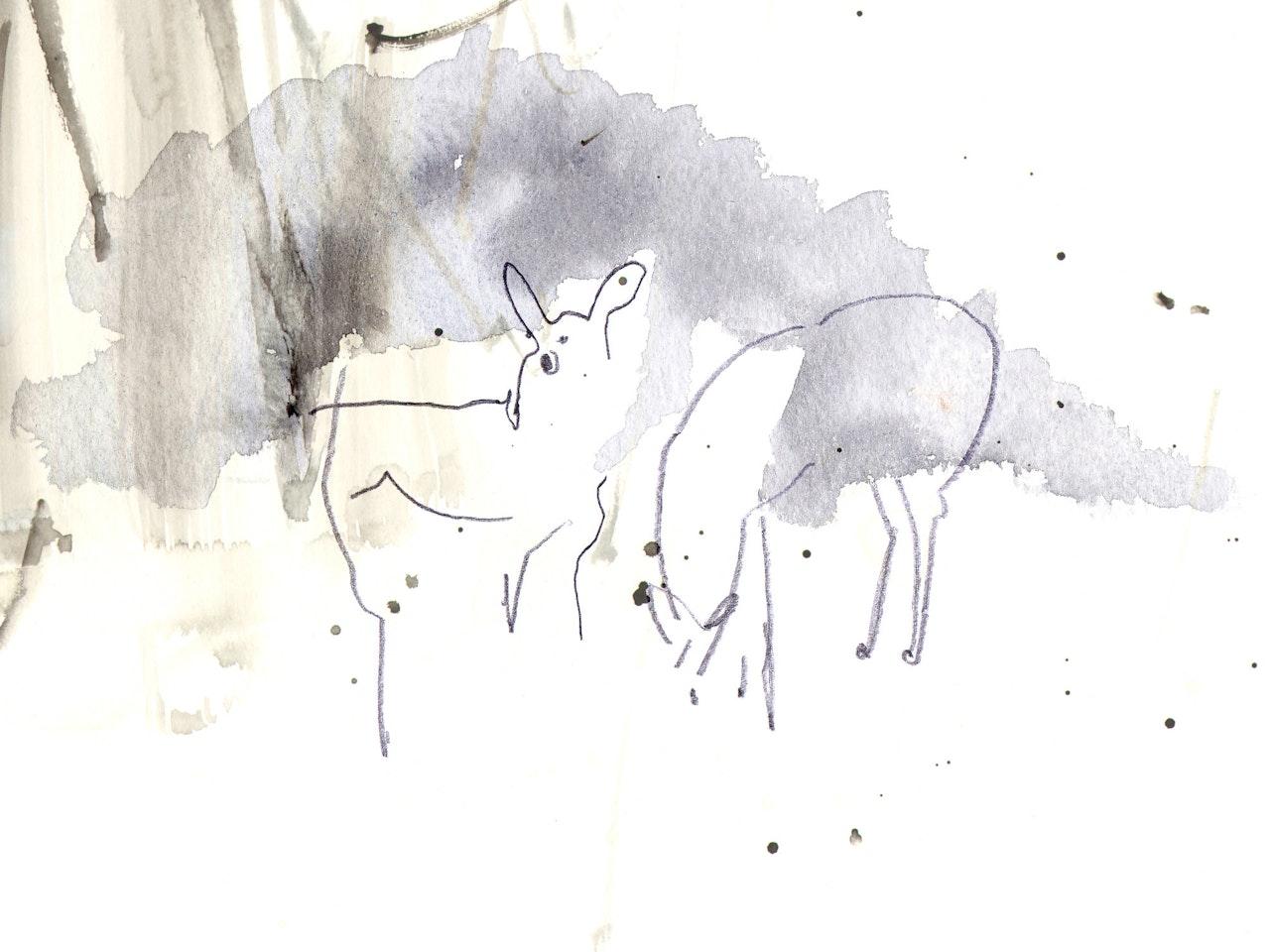 Vicky Bentham Green 16.01.15 Deer1 Unpublished