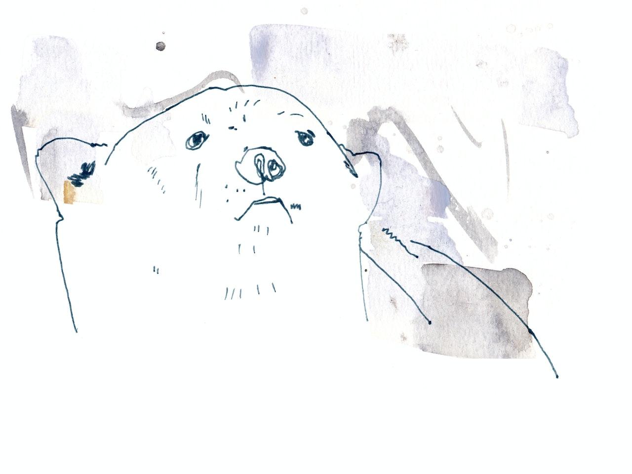 Vicky Bentham Green 16.01.15 Polar Bear2 Unpublished