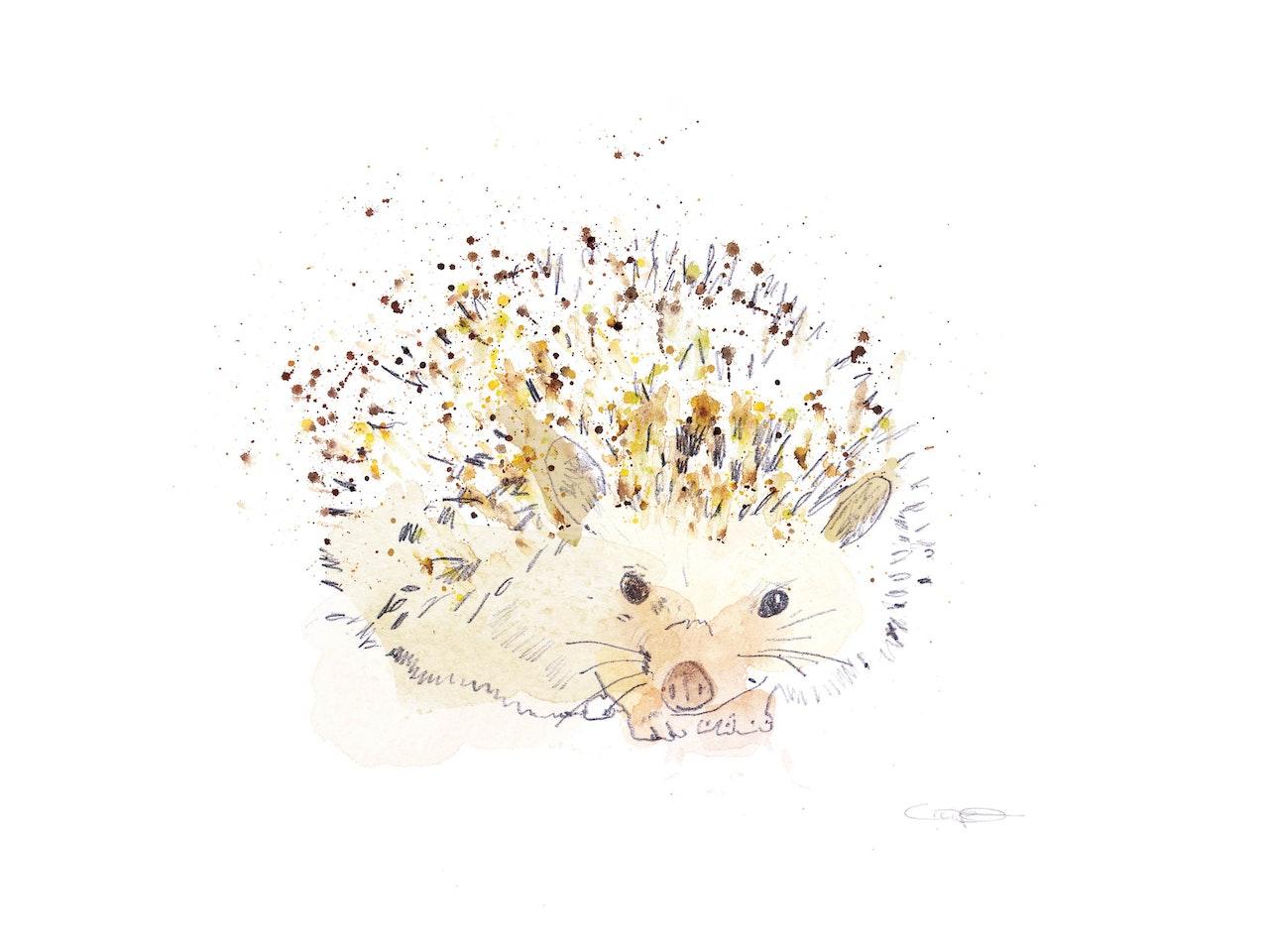 Spike the hedgehog!