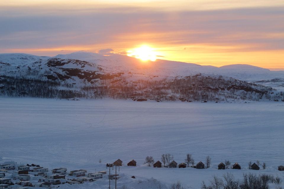 Arctic 1
