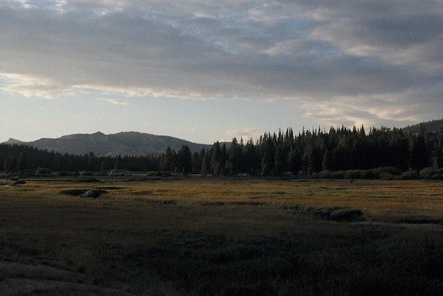 Twilight Tuolumme Meadows