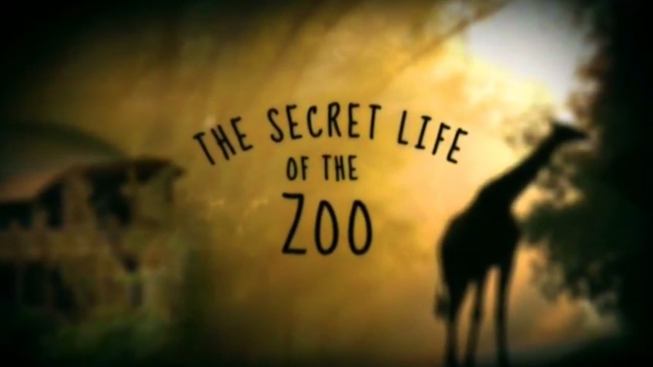 The Secret Life of the Zoo -
