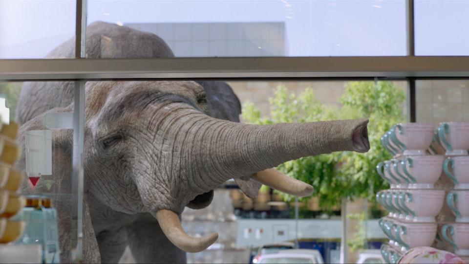 Fox Home - Elephant