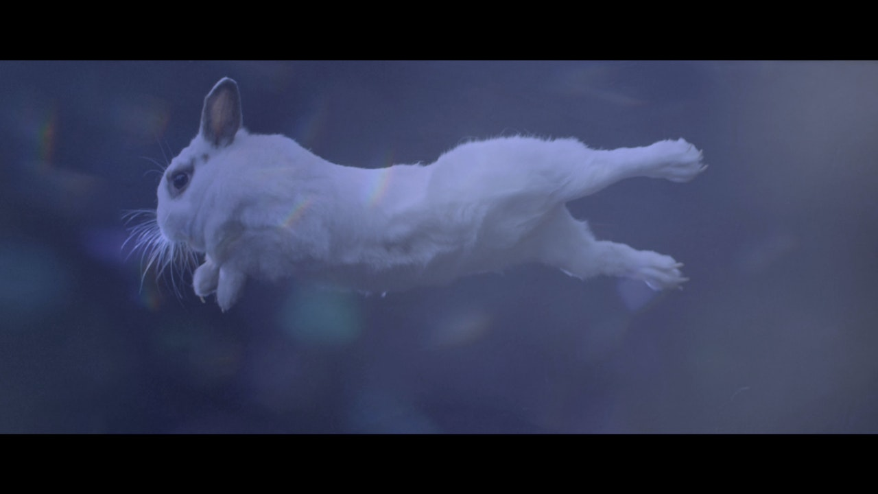 Philips. Make me a morning person. European Campaign -