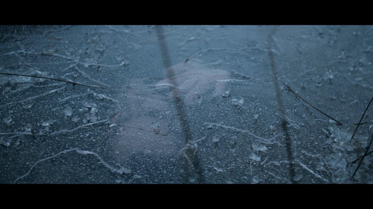 Zulu Winter - We should Be Swimming -