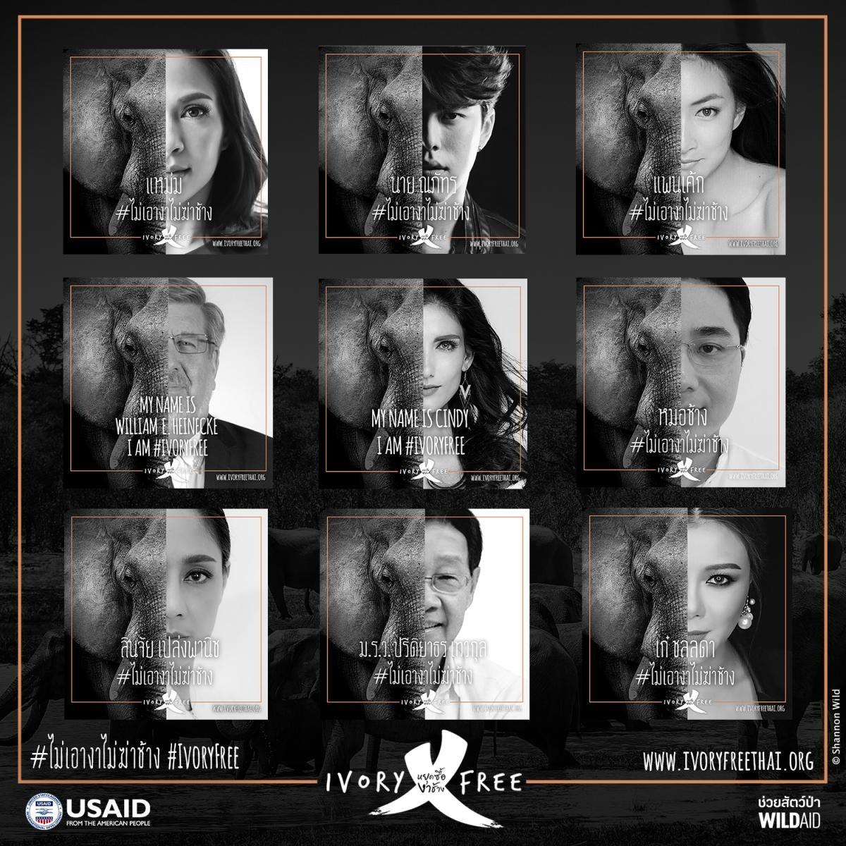 MKANDPA - Thai-celebs-ivory-free