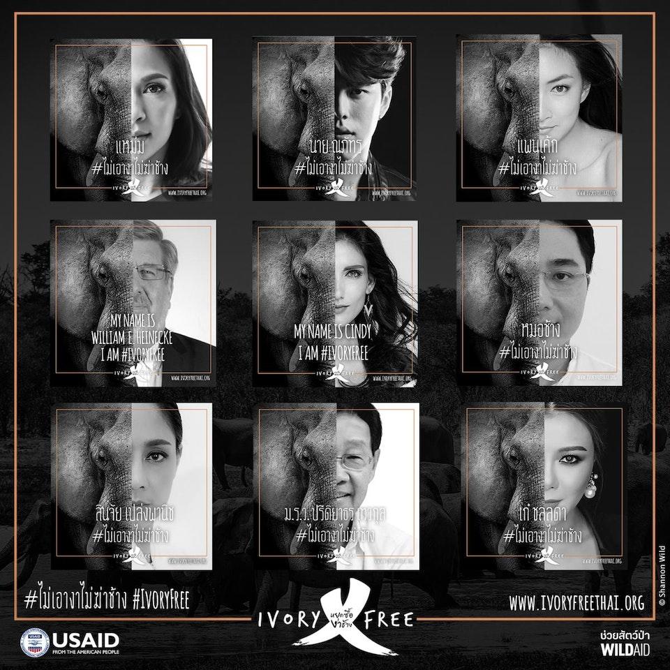 Wild Aid. Go Ivory Free Thai-celebs-ivory-free