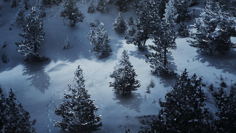 COCA COLA 'Footprints'