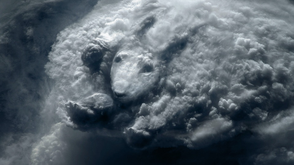 Hennessy 'Cloud'