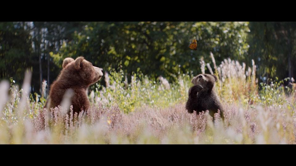Center Parcs 'Bears'