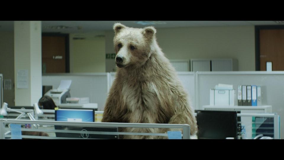 Center Parcs 'Bears' - Shot 04