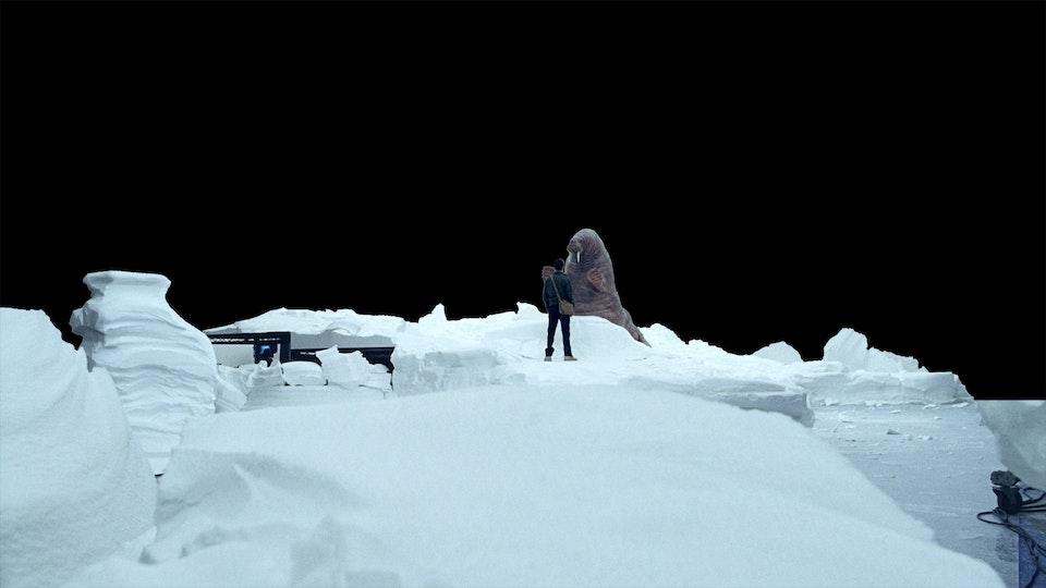 Vigorsol 'Cult Alaskan'