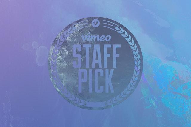Vimeo Staff Picks Volume 2