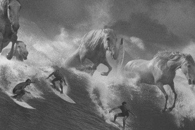 Fabrik Selects: Guinness Surfer