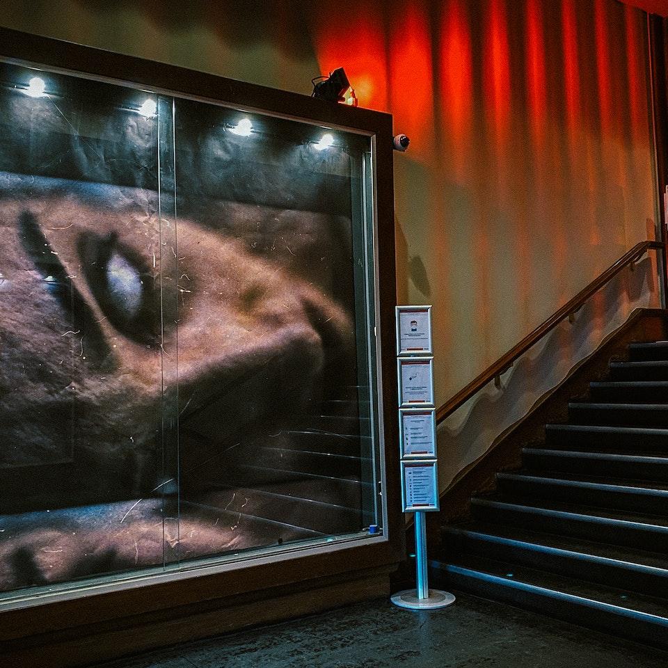 MOTELX 2020 - Lisbon International Horror Film Festival - Motelx2020_NoEspaço_5