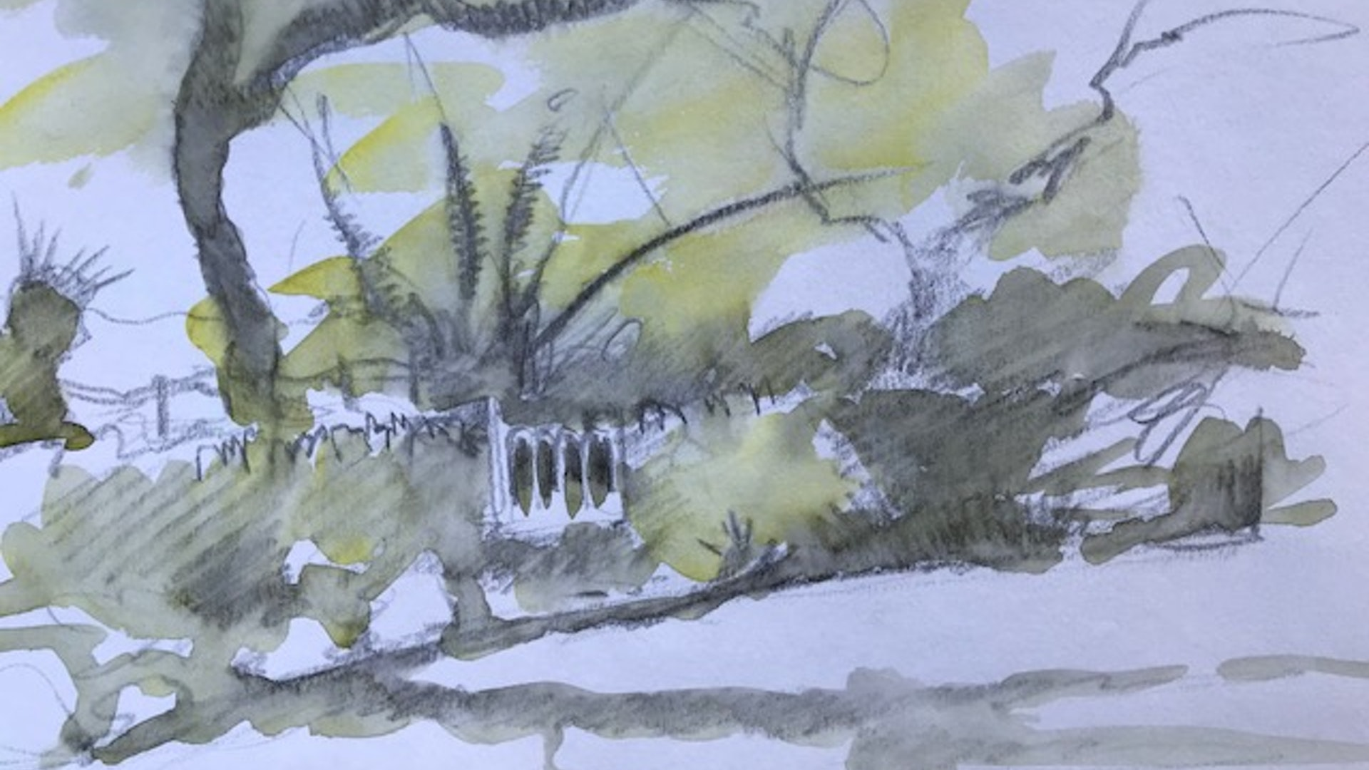 borrowed trees sketch