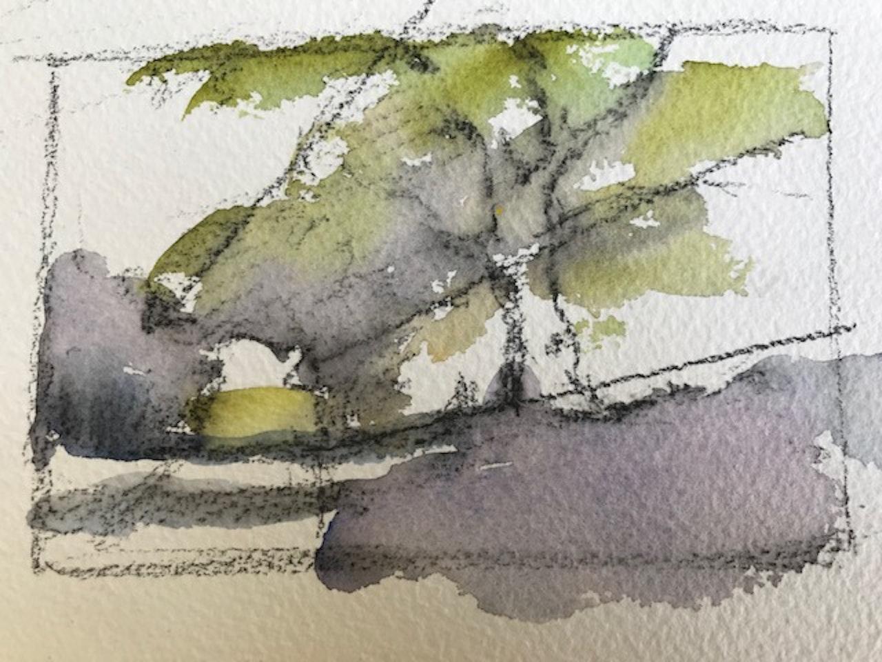 2.Wycwhood tree thumbnail sketch
