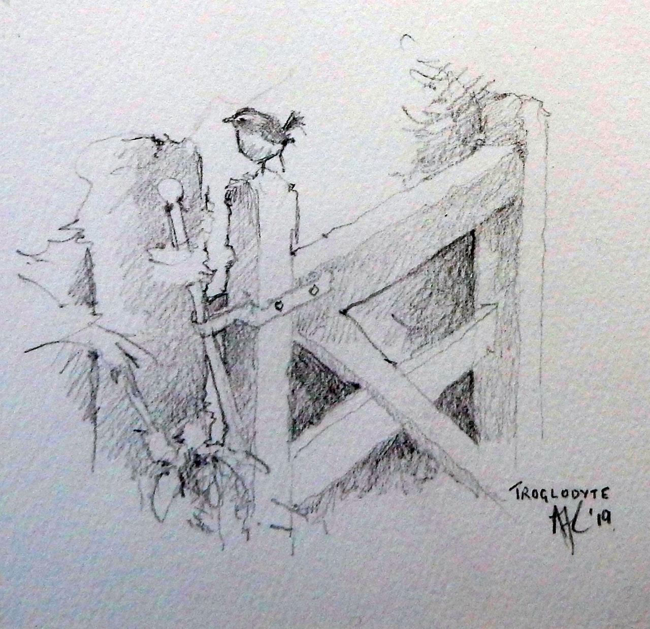 Trog sketch £135 PROCEEDS TO SONGBIRD SURVIVAL