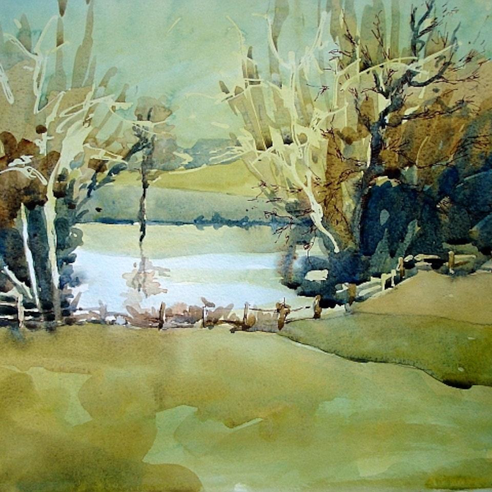 Portfolio pond nr Glympton