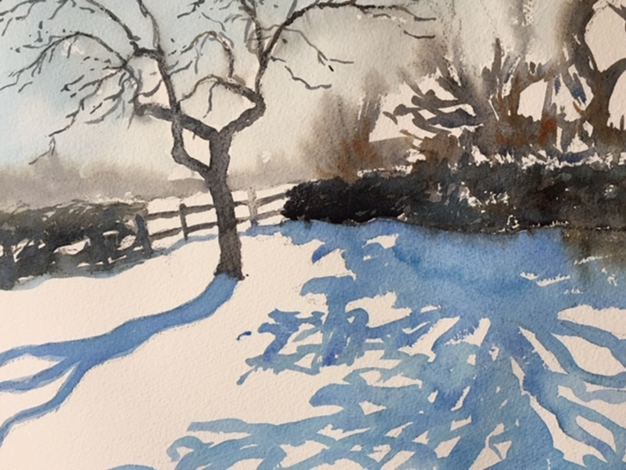 FEBRUARY Bramley in the snow