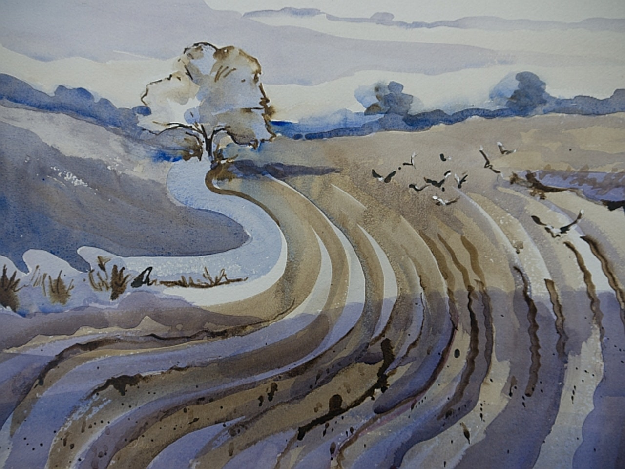 Gulls on the ploughing. Sold Asthall Expo