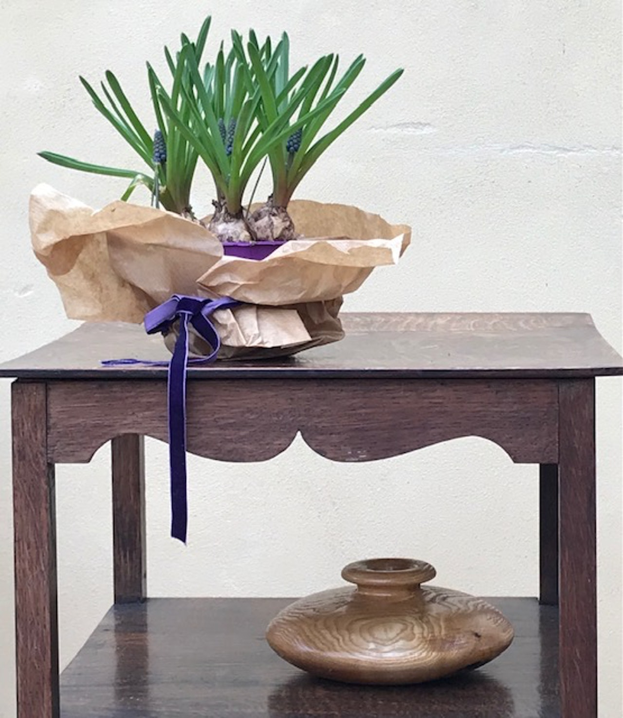Lesson 8 Grape Hyacinths