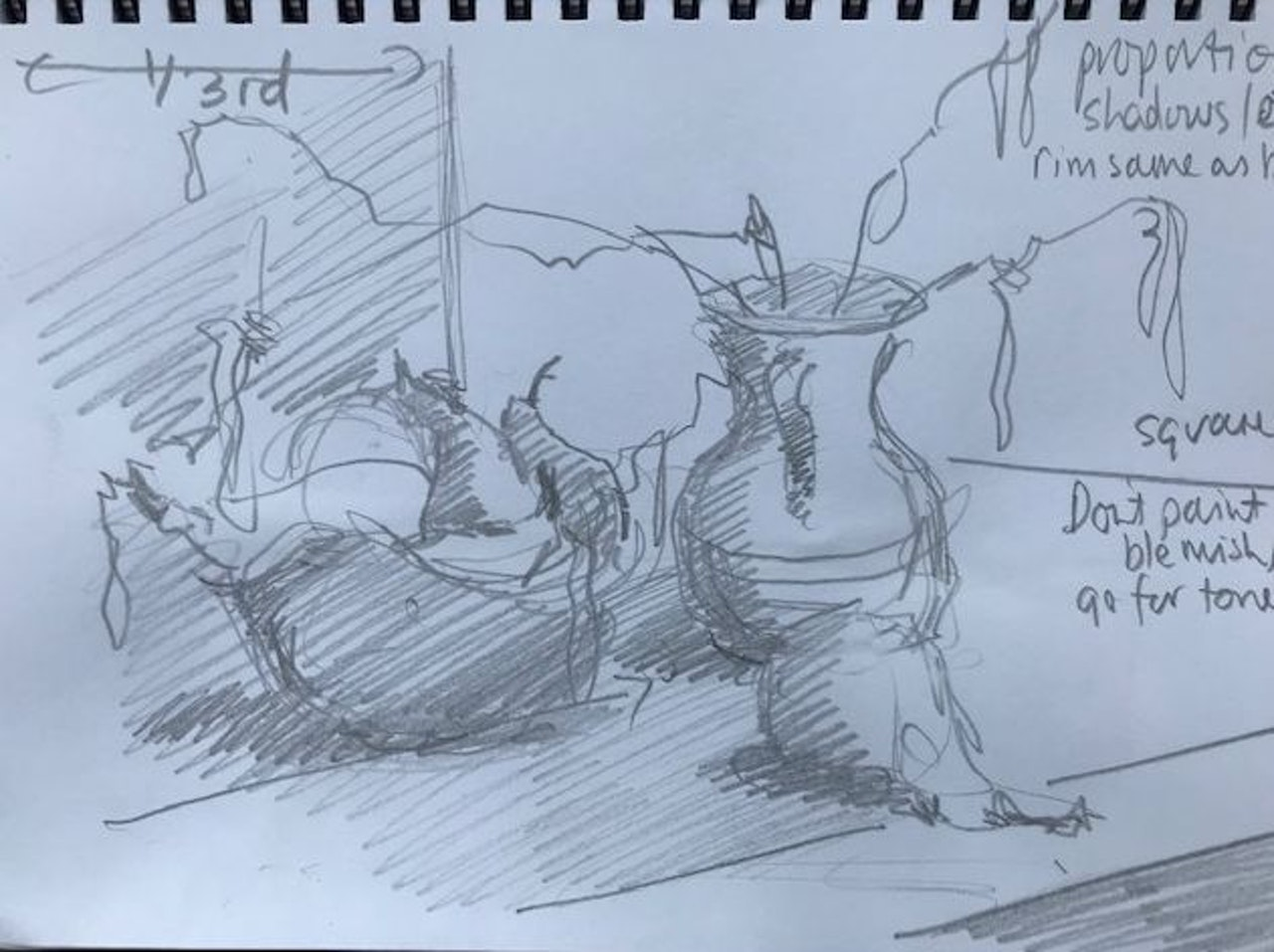 JJ5 Catkins and pears thumbnail sketch