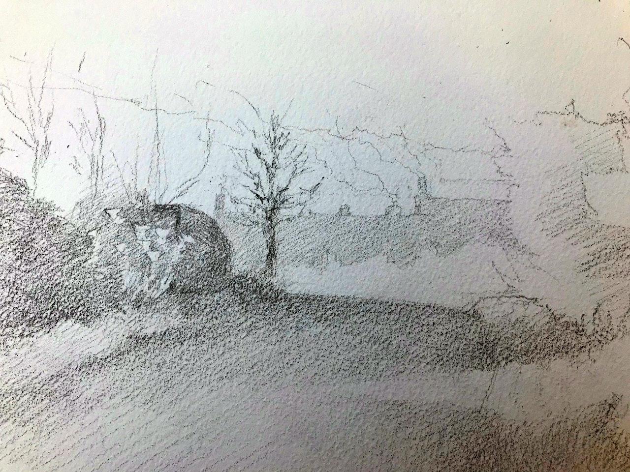 Lesson 5 full tonal pencil drawing of Smoke