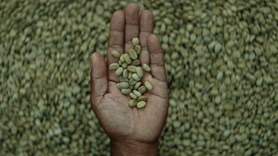 Nespresso Master Origins - Global TVC