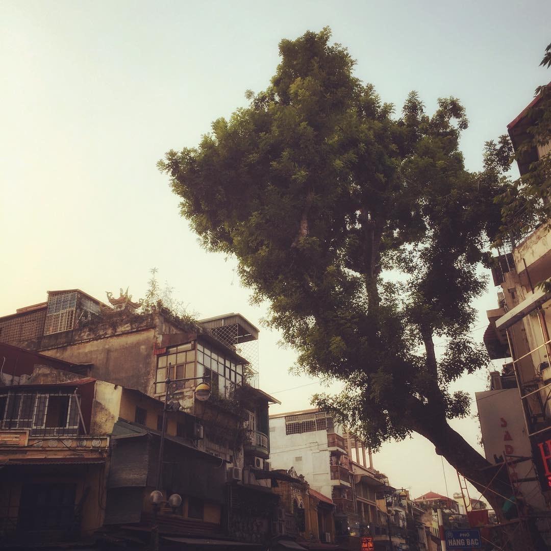 BEN JOINER ASC - Hanoi