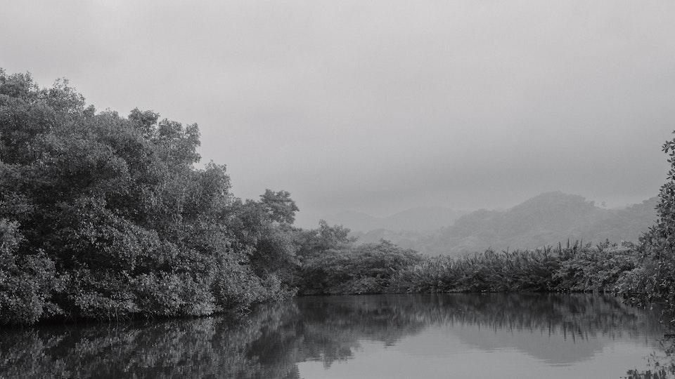 Charlie Crane - River