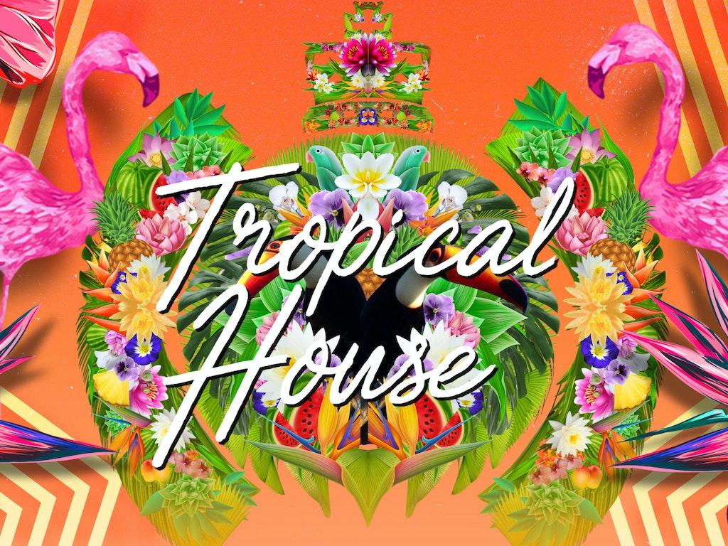 MOS Tropical House