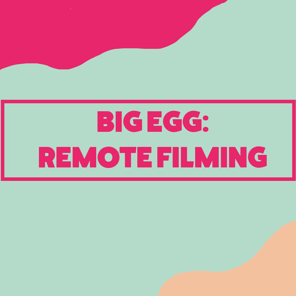 Big Egg Films - Video Production, Brighton. - How We're Working Remotely to Get Your Projects Made