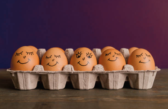 Five fun facts about eggs #1