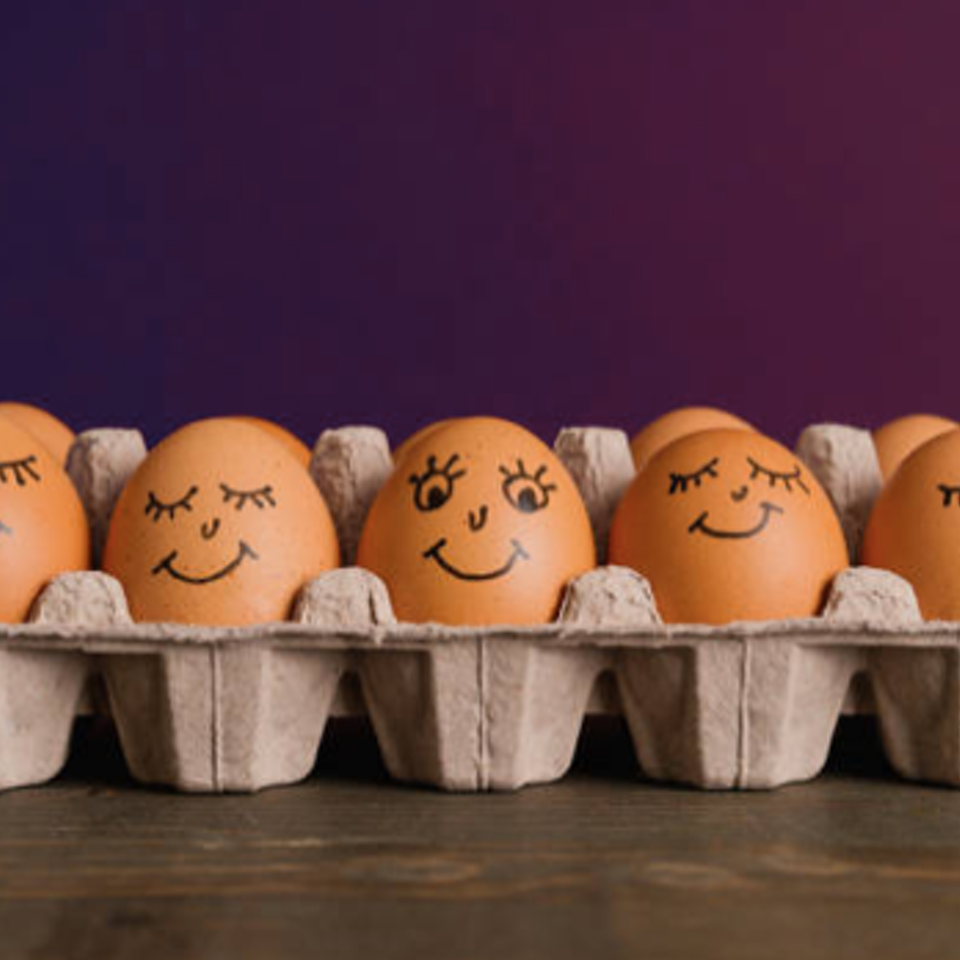 Big Egg Films - Video Production, Brighton. - Five fun facts about eggs #1