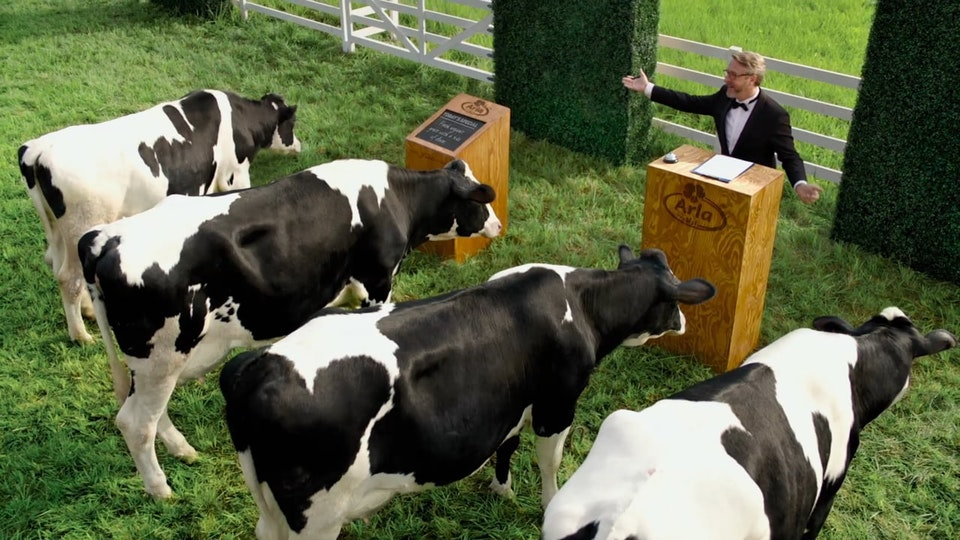 Arla Milk Commercial (Directors Cut)