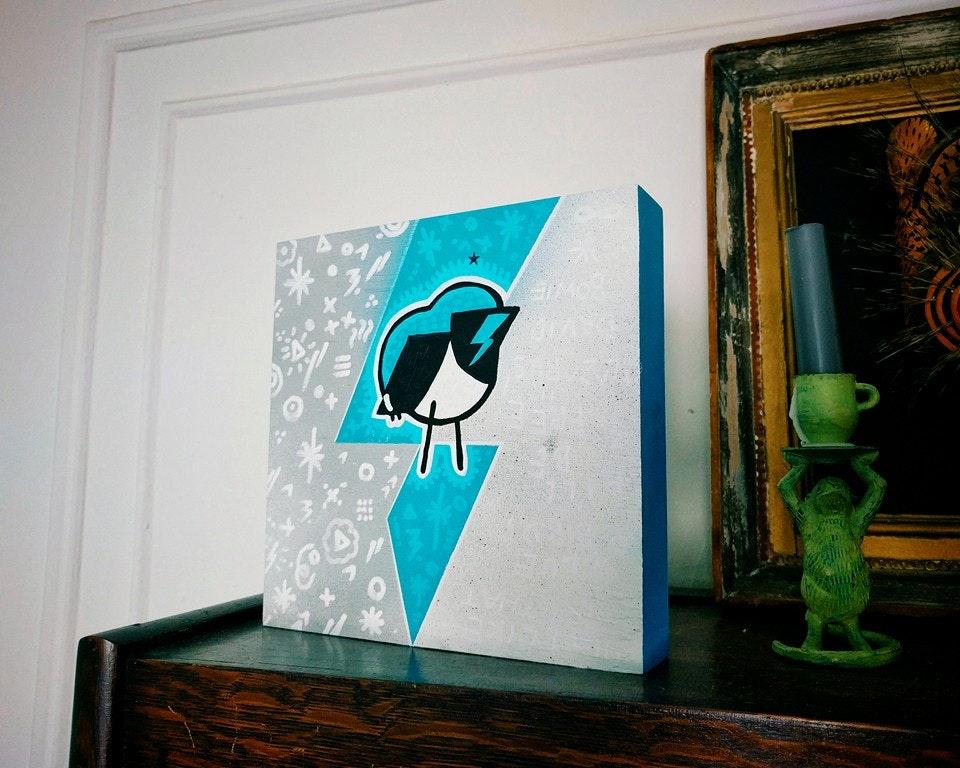 Black-throated Blue Warbler 13327571_10154347756570832_5497914462690219000_n