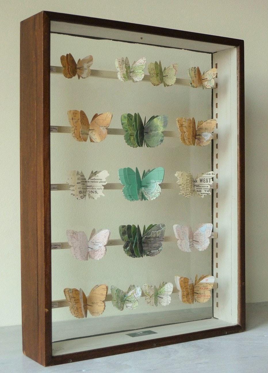 Tracey Bush - britishbutterflies