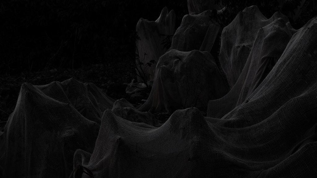Midnight Maradeurs