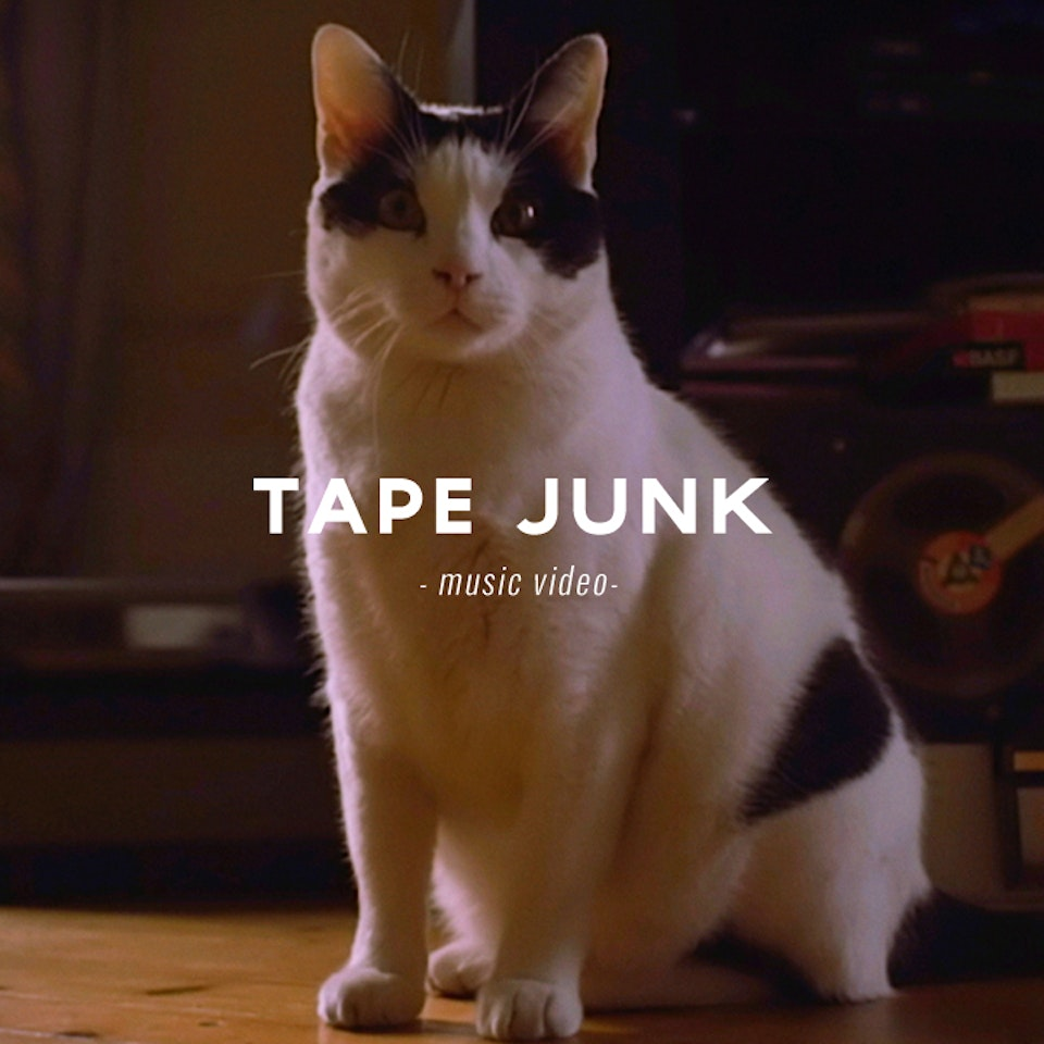 PETER PINT / DIRECTOR - Tape Junk / Six Strings and the Booze