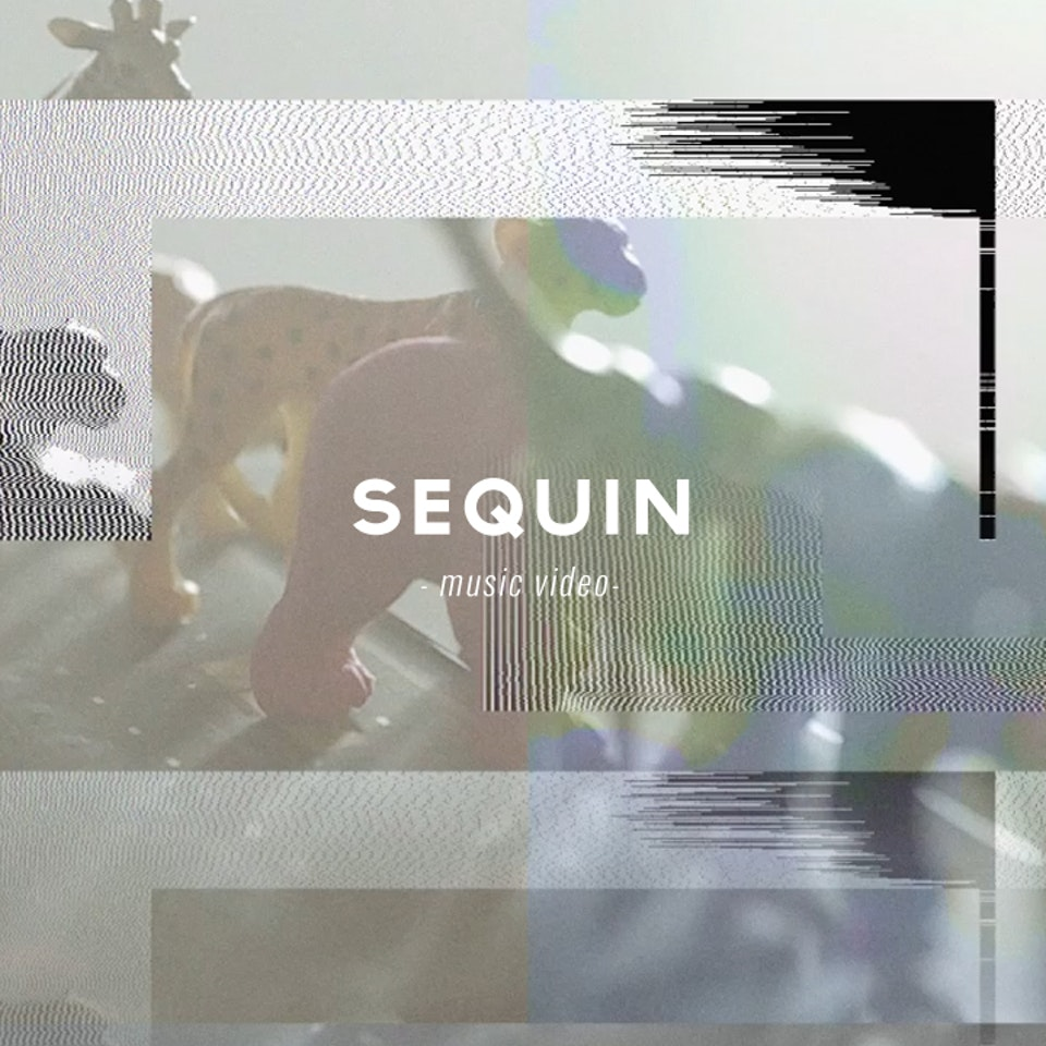 PETER PINT / DIRECTOR - Sequin / Flamingo
