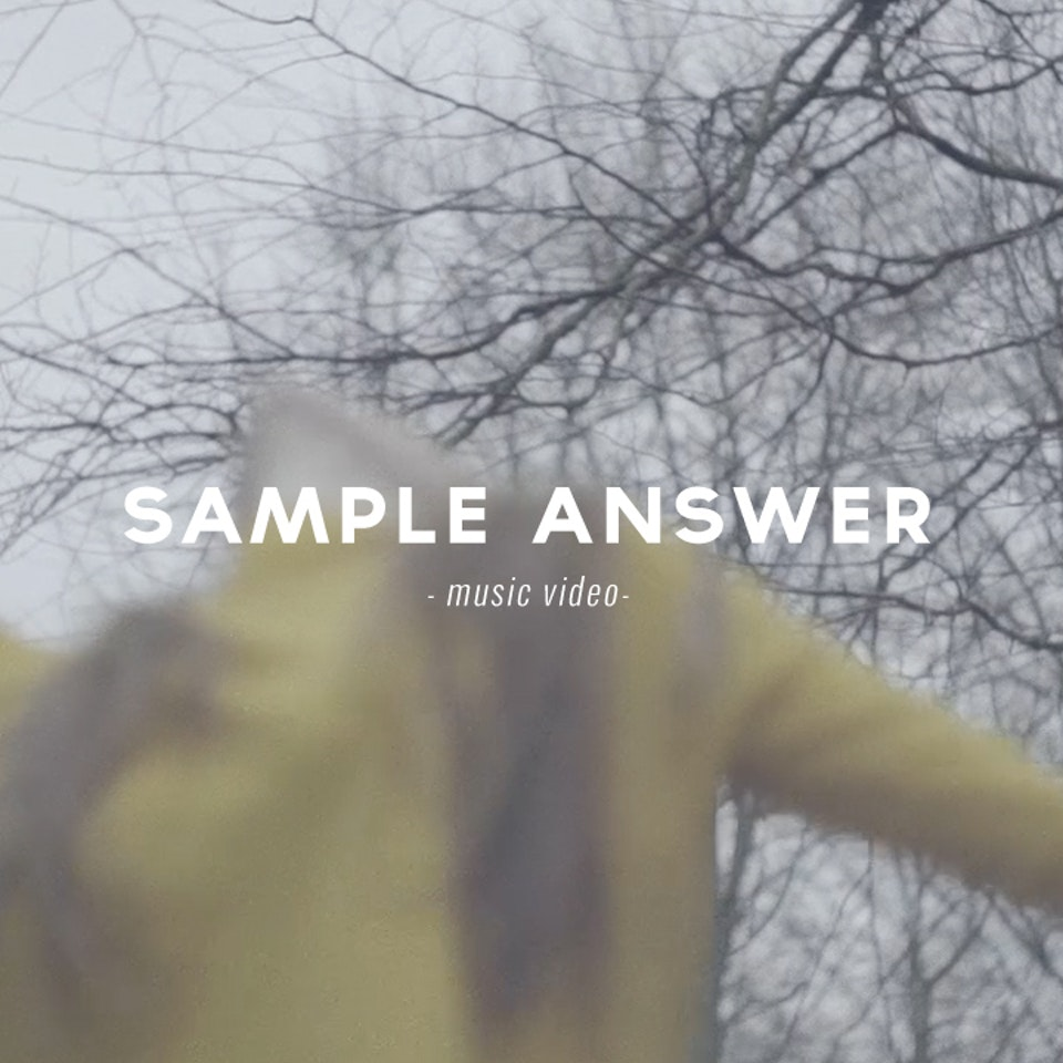 PETER PINT / DIRECTOR - Sample Answer / Collision