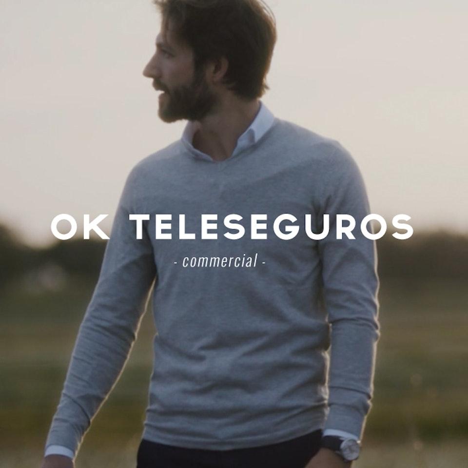 PETER PINT / DIRECTOR - OK Teleseguros