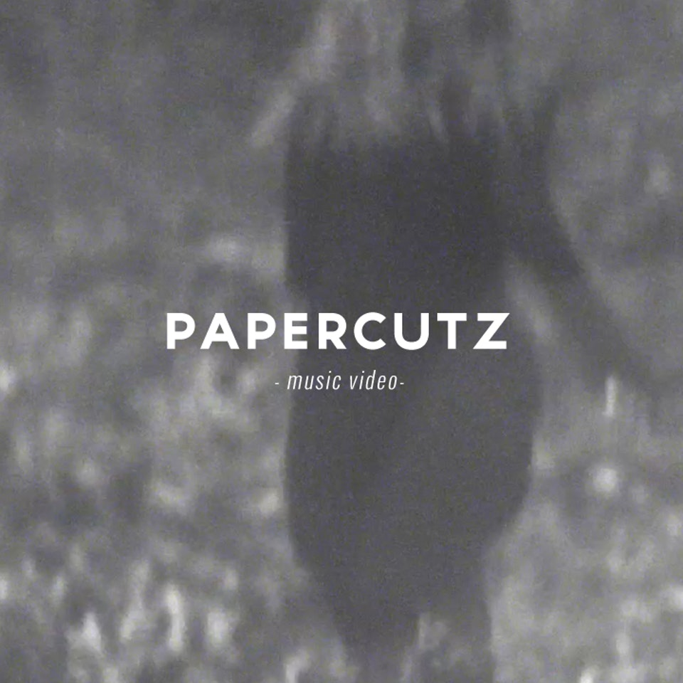 PETER PINT / DIRECTOR - Papercutz / Disintegration